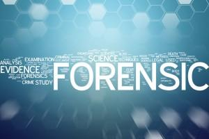 Forensic Psychology online art class college credit