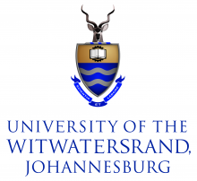 llm coursework wits