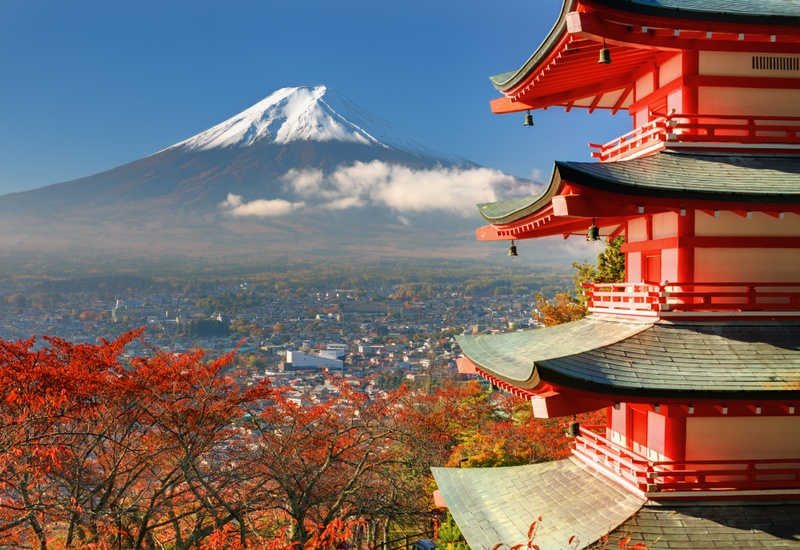 5 Top Reasons Why You Should Study in Japan