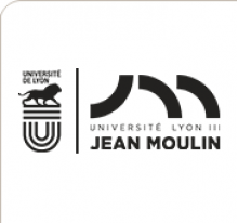 Jean Moulin Lyon 3 University