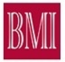 BMI Baltic Management Institute