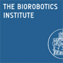 Ph.D. programma in BioRobotics