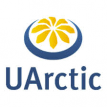 Master of Arctic Art and Design